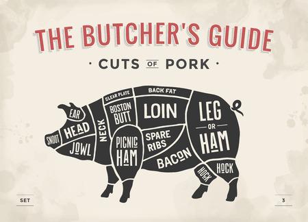 Stuk vlees set. Poster Butcher diagram, schema en gids - Varkensvlees. Vintage typografische hand getekende. vector illustratie