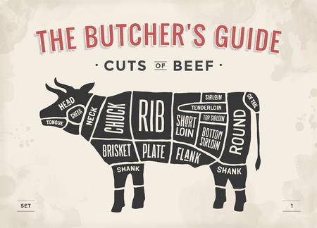 diagrama: Corte del conjunto de la carne de vacuno. Cartel diagrama de carnicero y el esquema - vaca. Vintage dibujado a mano tipográfica. ilustración vectorial