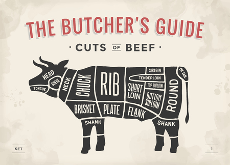 beef meat: Cut of beef set. Poster Butcher diagram and scheme - Cow. Vintage typographic hand-drawn. Vector illustration Illustration