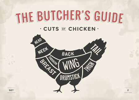 Cut of meat set. Poster Butcher diagram and scheme - Chicken. Vintage typographic