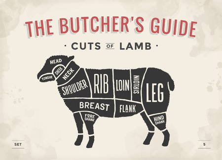Cut of beef set. Poster Butcher diagram and scheme - Lamb. Vintage typographic hand-drawn. Vector illustration  イラスト・ベクター素材