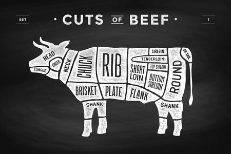 Corte del conjunto de la carne. Cartel diagrama de carnicero y el esquema - vaca. tipografía de época dibujados a mano sobre un fondo negro pizarra. ilustración vectorial