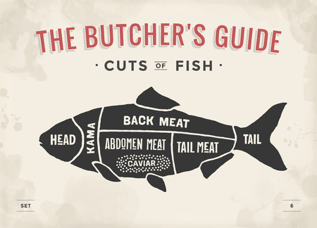 Cut of meat set. Poster Butcher diagram and scheme - Fish. Vintage typographic hand-drawn. Vector illustration Vettoriali