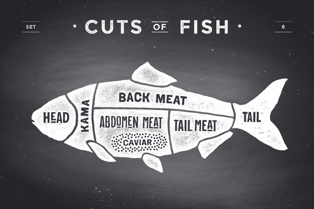fresh fish: Cut of meat set. Poster Butcher diagram and scheme - Fish. Vintage typographic  on a black chalkboard background. illustration