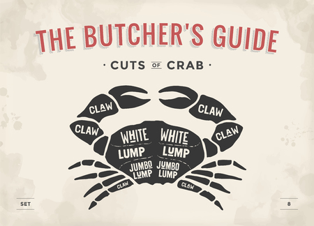 Cut of meat set. Poster Butcher diagram and scheme - Crab. Vintage typographic hand-drawn visual guide for butcher shop. Vector illustration