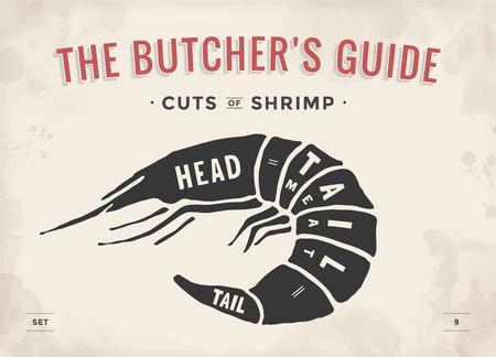 Coupe d'ensemble de la viande. Affiche Butcher diagramme et régime - Crevettes. Guide Vintage dessiné à la main typographic visuel pour boucherie. Vector illustration