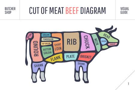 Corte del conjunto de la carne. Cartel diagrama de carnicero y el esquema - vaca. Colorido tipográfica vendimia dibujados a mano sobre fondo blanco para carnicería. ilustración vectorial