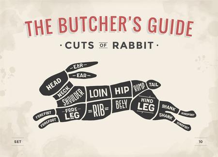 Taglio del set di carne. Poster Schema di macellaio, schema - Coniglio.