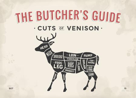wild venison: Cut of meat set. Poster Butcher diagram, scheme - Venison. Vintage typographic hand-drawn deer silhouette for butcher shop, restaurant menu, graphic design. Meat theme. Vector Illustration Illustration