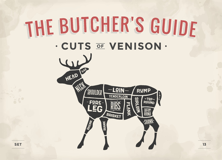 Cut of meat set. Poster Butcher diagram, scheme - Venison. Vintage typographic hand-drawn deer silhouette for butcher shop, restaurant menu, graphic design. Meat theme. Vector Illustration Illustration