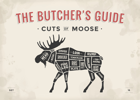 Cut of meat set. Poster Butcher diagram, scheme - Moose. Vintage typographic hand-drawn moose silhouette for butcher shop, restaurant menu, graphic design. Meat theme. Vector Illustration  イラスト・ベクター素材