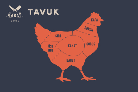 Typographic with the names of parts of meat in Turkish. Graphic design for butcher shop, restaurant poster, banner. Vector Illustration Stok Fotoğraf - 102683214