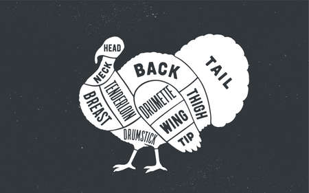 Turkey. Butcher guide scheme. Turkey Chart. Turkey silhouette, chalk, blackboard. Poster for Butchery meat shop, Restaurant menu, Kitchen wall design, typography. Vector Illustration 向量圖像