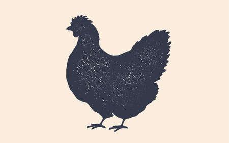 Hen, chicken. Vintage retro print, poster
