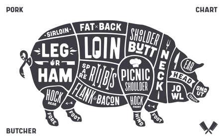 Pork, pig. Scheme, diagram, chart pork, butcher guide
