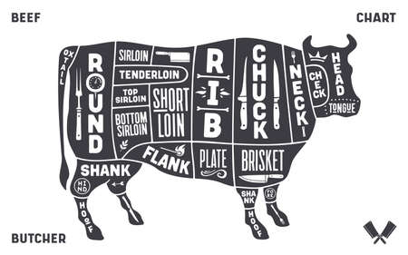Cow, beef. Scheme, diagram, chart beef, butcher guide.