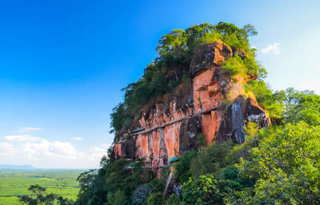 blue mountains tree frog: Landscape, mountain in Thailand