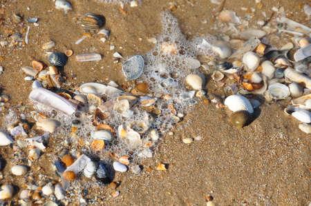 Rekken op strand
