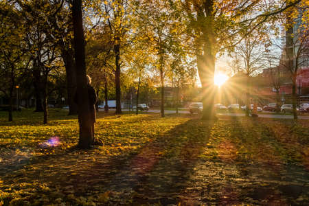 Sunbeam at sunset in a parc of montreal. A woman looks peacefully at the sun.