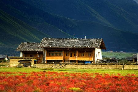 tibetan house: Day view of highland in Zhongdian China
