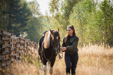 A young girl and her horse friend walk side by side along a hedge outside the city in autumn. Imagens