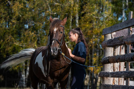 At the ranch, grooming time, a girl brushes her horse in the fall at the paddock.