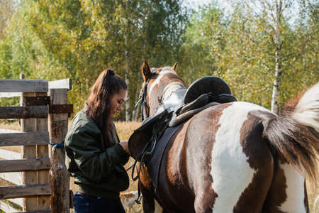 Saddling a beautiful mare on a ranch shows a young horse owner