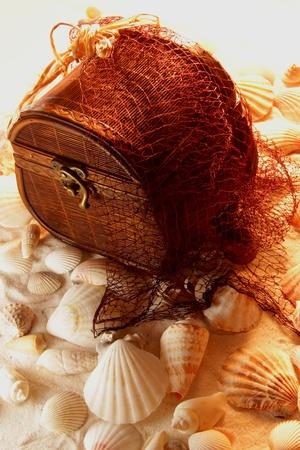 The treasure at the bottom of the sea caught in the net
