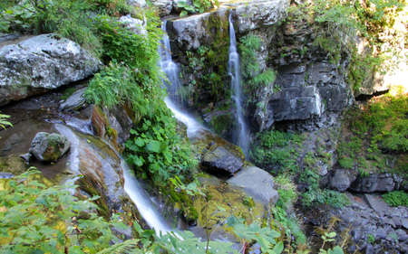 Amazing waterfalls in a peaceful green forest   Stock Photo - 16983601