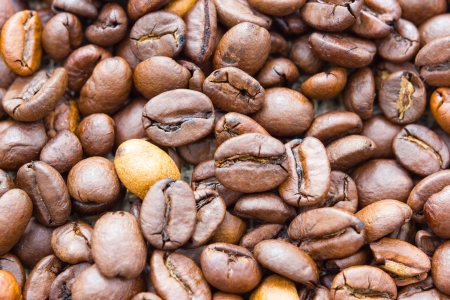 Close up view of same coffee beans photo