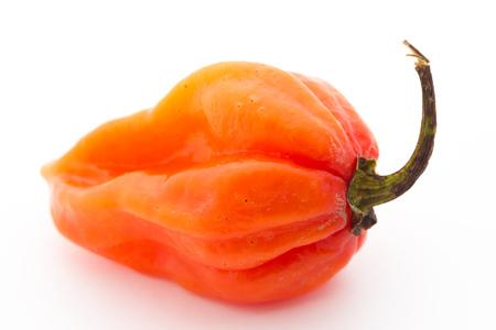 tex mex: Habanero pepper