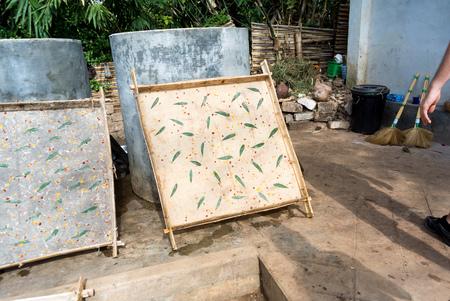 rice paper: Birmania rice paper