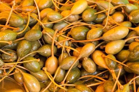 alcaparras: Alcaparras sicilianas de Italia
