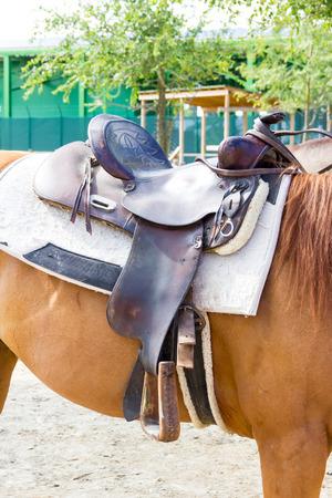 saddle: saddle Stock Photo
