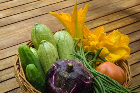calabacin: Flores de calabac�n