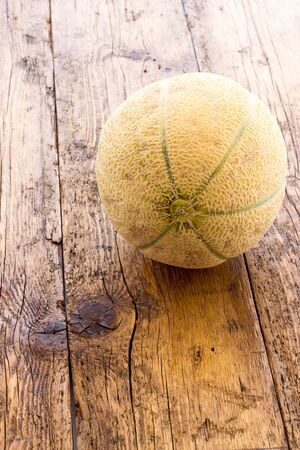 biological: Biological Yellow melon