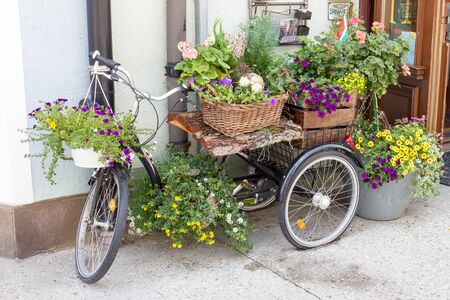 flowerpots: Beautiful Flowerpots Stock Photo