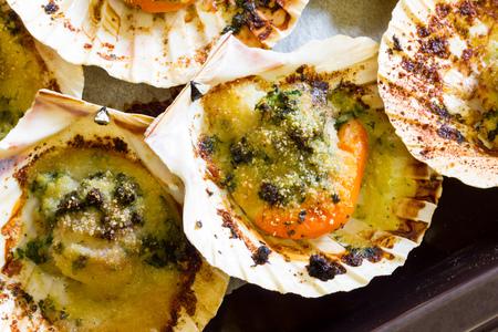 scallops: Tasty scallops au gratin baked