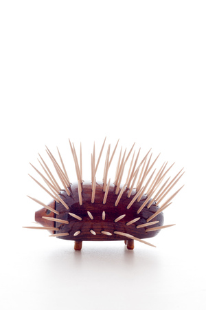 toothpick: Toothpick Holder porcupine Stock Photo