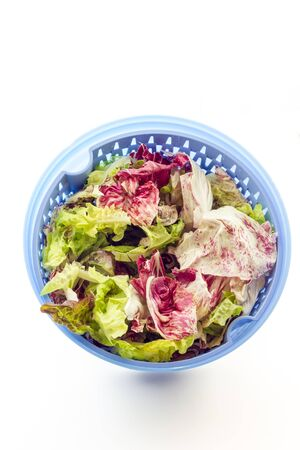 Salad with centrifugal dryer Stock Photo
