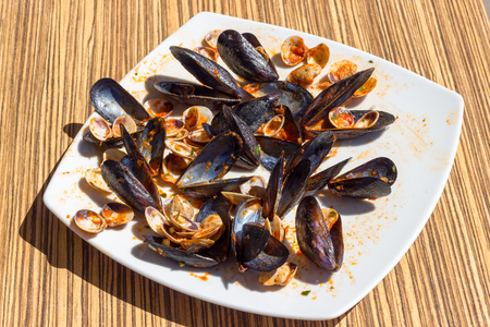 Empty mussels and clams