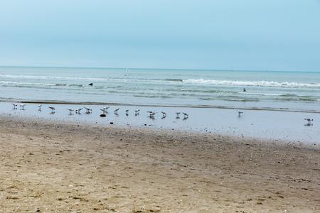 Rimini beach in winter Stock Photo - 91866716