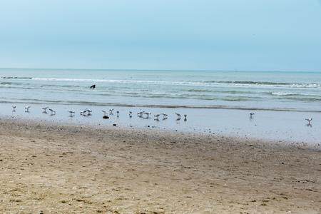 Rimini beach in winter Stock Photo - 92549151