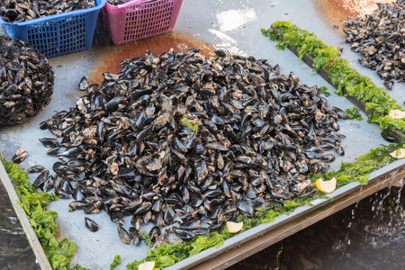 Mussels at the market of Naples Italy