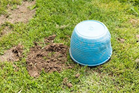 Trap for moles view Stock Photo