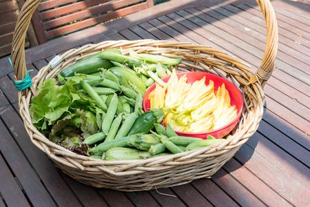 Basket with seasonal vegetables Banque d'images - 120090626
