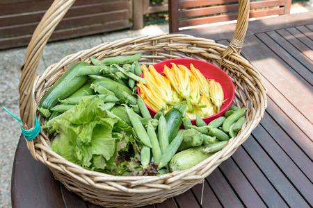 Basket with seasonal vegetables Banque d'images - 124646596
