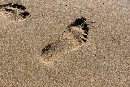 Footprints on the shore of the sea Фото со стока