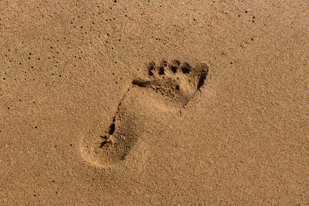 Footprints on the shore of the sea Stock Photo
