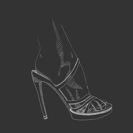 femininity: Vector hand-drawing female foot in the shoe Illustration